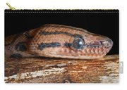 Brazilian Rainbow Boa Epicrates Cenchria Carry-all Pouch