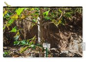 Breadfruit Tree Carry-all Pouch