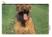 Briard Puppy Carry-all Pouch