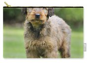 Briard Puppy On Grass Carry-all Pouch