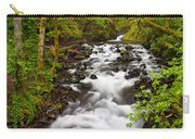 Bridal Veil Creek Carry-all Pouch