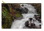 Lower Wahkeena Falls Carry-all Pouch