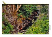 Bridge Over North Harbour River-nl Carry-all Pouch