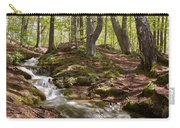 Bright Forest Creek Carry-all Pouch