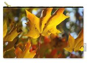 Brilliant Autumn Light And Color Carry-all Pouch