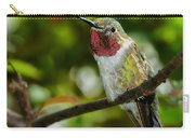 Brilliant Color Of The Ruby-throated Hummingbird Carry-all Pouch