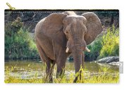 Brilliant Elephant Carry-all Pouch