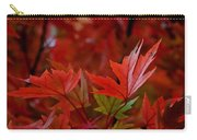 Brilliant Red Maples Carry-all Pouch by Linda Unger