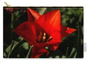 Brilliant Spring Sunshine In Red  Carry-all Pouch
