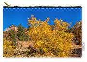 Brilliant Zion Colors Carry-all Pouch