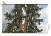 Brisslecone Pine Tree Carry-all Pouch