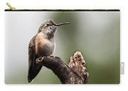Broad-tailed Hummingbird Sit  Carry-all Pouch