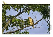 Broad Winged Hawk Carry-all Pouch