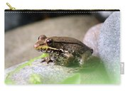 Bronze Frog Carry-all Pouch