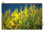 Broom And Carpenter Bee Carry-all Pouch