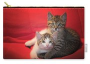Brothers Kittens Carry-all Pouch