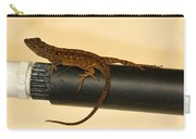 Brown Anole On Pipe Carry-all Pouch