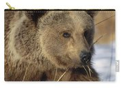 Brown Bear Eating Dry Grasses Carry-all Pouch