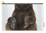 Brown Bear Holding Its Paws Germany Carry-all Pouch