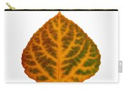 Brown Green Orange And Red Aspen Leaf 1 Carry-all Pouch