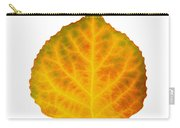 Brown Green Orange Red And Yellow Aspen Leaf 3 Carry-all Pouch