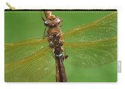 Brown Hawker Dragonfly Switzerland Carry-all Pouch