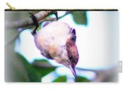 Brown-headed Nuthatch 9173-006 Carry-all Pouch