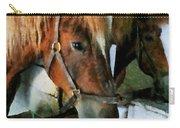 Brown Horse In Stall Carry-all Pouch