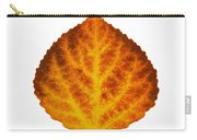 Brown Orange And Yellow Aspen Leaf 1 Carry-all Pouch