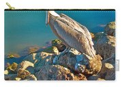 Brown Pelican In San Carlos-sonora Carry-all Pouch
