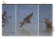 Brown Pelican - Triptych Carry-all Pouch