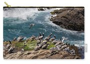 Brown Pelicans And Gulls On The Reef Carry-all Pouch