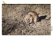 Brown Rat Carry-all Pouch