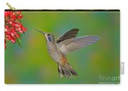 Brown Violet-ear Hummingbird Carry-all Pouch