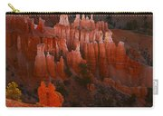 Bryce Canyon 17 Carry-all Pouch