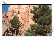 Bryce Canyon Fins Carry-all Pouch