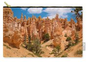 Bryce Canyon Spirals 2 Carry-all Pouch