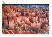 Bryce Canyon Utah Views 508 Carry-all Pouch