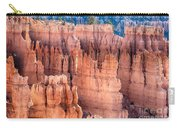 Bryce Canyon Utah Views 90 Carry-all Pouch