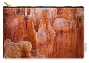Bryce Hoodoos Carry-all Pouch