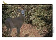 Buck Carry-all Pouch