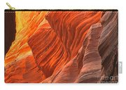 Buckskin Shades Of Red Carry-all Pouch