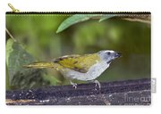 Buff-throated Saltator Carry-all Pouch