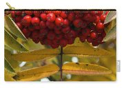 Buffalo Berries Carry-all Pouch