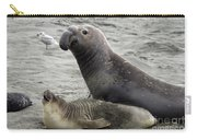 Bull Approaches Cow Seal Carry-all Pouch by Mark Newman