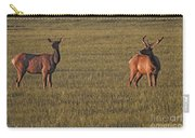 Bull Elk In Velvet With Cow   #5304 Carry-all Pouch