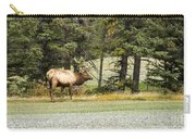 Bull In Waiting Carry-all Pouch