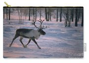 Bull Reindeer In  Siberia Carry-all Pouch