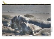 Bull Seal Carry-all Pouch