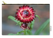 Burgundy Straw Flower Carry-all Pouch